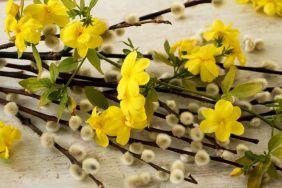 Заговоры и ритуалы на Вербное Воскресенье