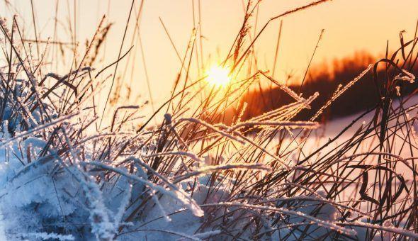 Актуальные приметы погоды на январь