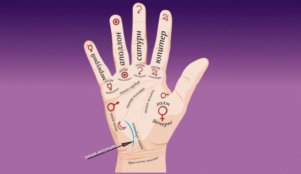 Варианты значений линии интуиции на руке