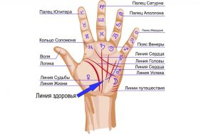 Значение и расшифровка Линии Здоровья на руке