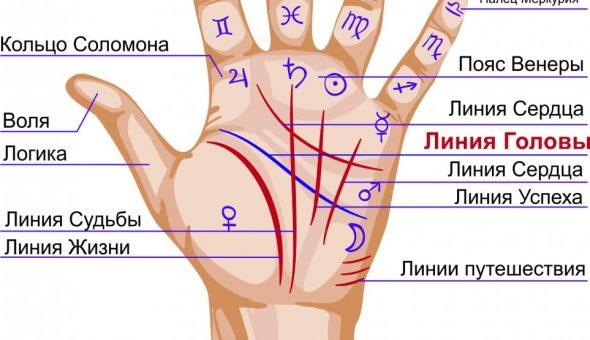 Значение и расшифровка линии Головы на руке