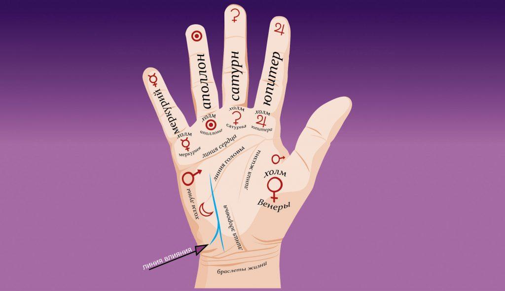 О чм сможет рассказать линия влияния на руке