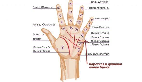 Толкование и описание линии замужества на руке