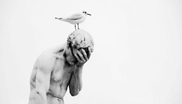 Птичка накакала на человека