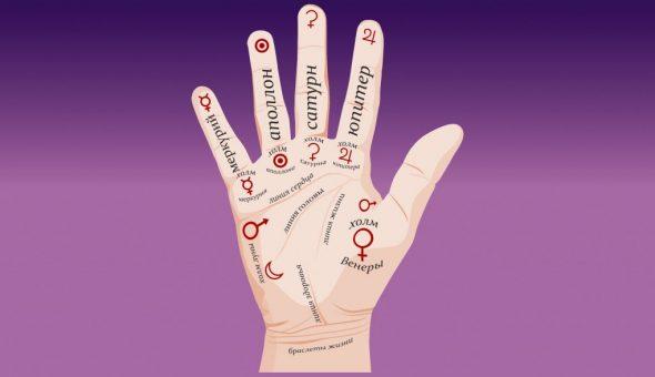 Название пальцев на руке человека и расшифровка