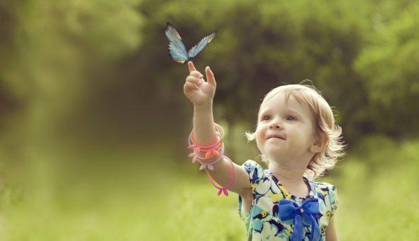 Бабочка садится на руку или другую часть тела