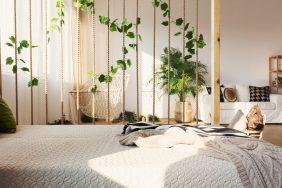 Приметы о содержании дома комнатного плюща