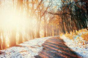 Ноябрьские приметы о погоде