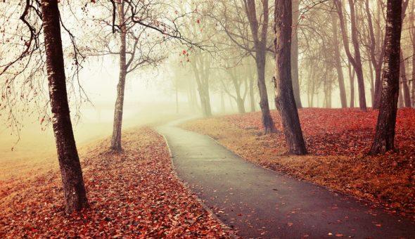 Погода ноября может быть очень разной