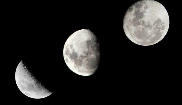Растущая луна имеет большое значение для огородников