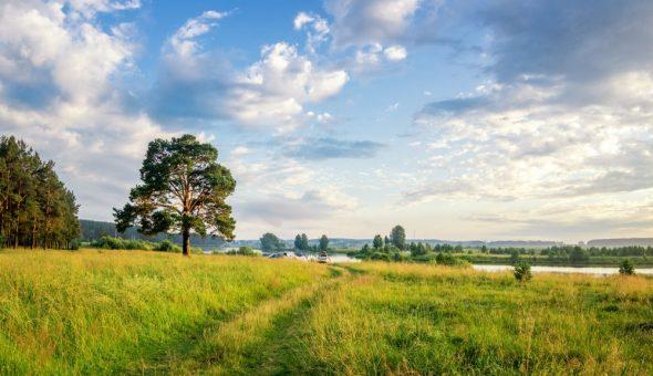Приметы на июль помогают определить погоду