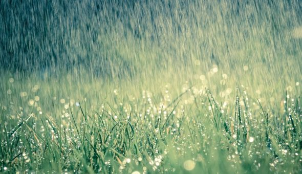 Дождь 3 июля сулит дождливую погоду в последующие 40 дней