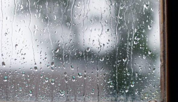 Дождь 9 июля предвещает дождливую погоду до конца лета