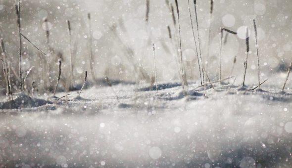 Приметы на декабрь связаны с предсказанием погодных условий