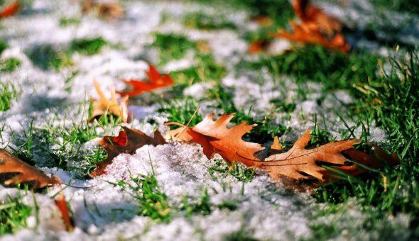 20 октября отмечали, когда начнется зима