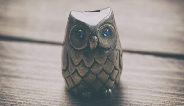 Значение символа сова — познание неизведанного