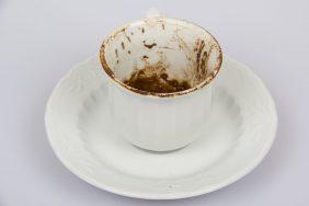 Значение совы при гадании на кофейной гуще
