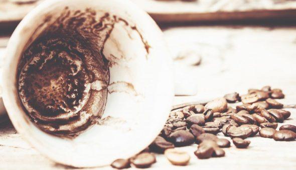 Медведь на кофейной гуще: толкование